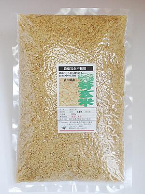 香川産自然農法「発芽玄米」